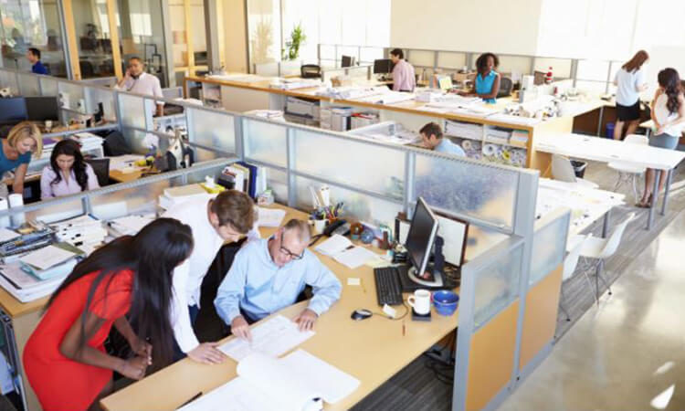 5 easy environment changes to boost workplace productivity and employee happiness